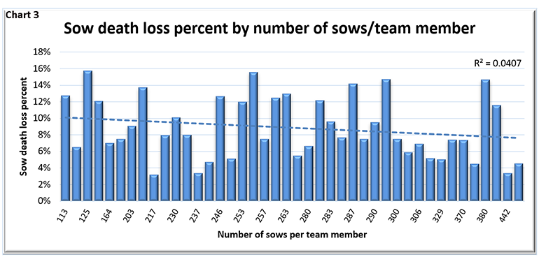 Sow death loss percent by number of sows per team member