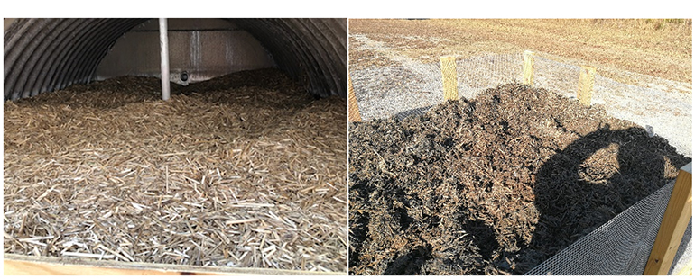 Switchgrass before (left panel) and after (right panel) fermentation in the secondary digester.