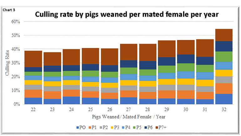Chart 3: Culling rate by pigs weaned per mated female per year