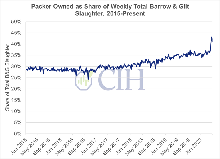 Figure 1: Packer-owned as share of weekly total barrow and gilt slaughter (2015-present)