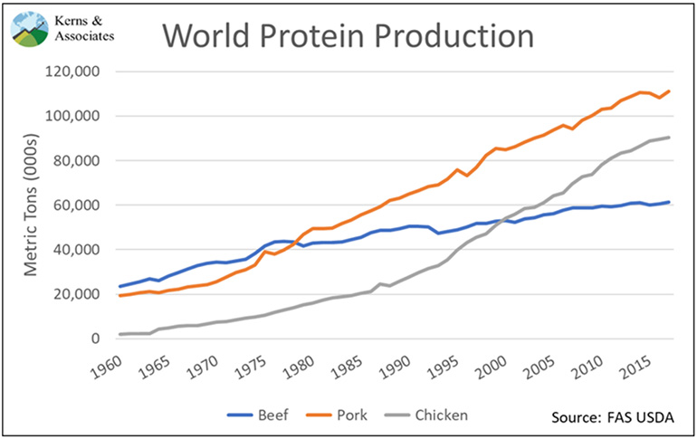 World protein production