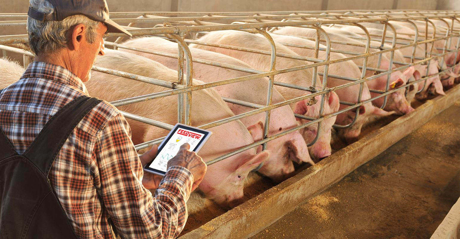 Sensors and software to simplify feed inventory | National Hog Farmer