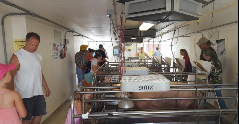 Illinois State Fair visitors interact with pigs at the swine birthing center