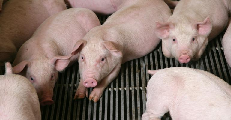 Global Mega Producers lists the top performers in pork sales
