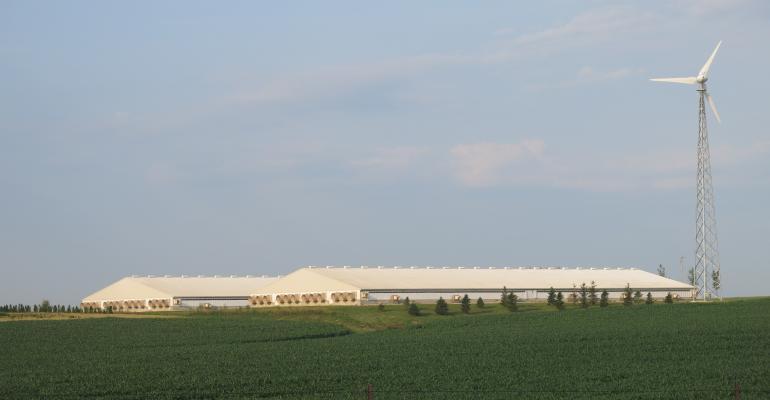 U.S. Hog farm