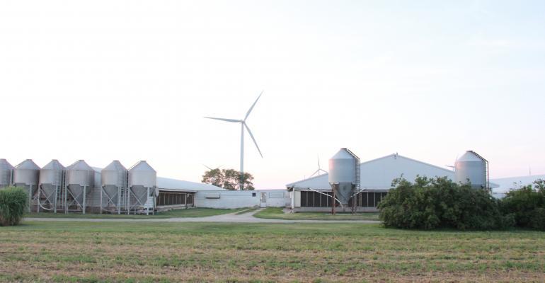 Hog farm barns pigs FDS operation.JPG