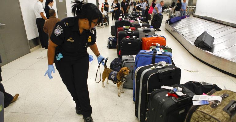 CBP beagle search FDS.jpg
