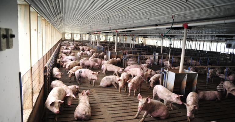Slaughter capacity in the fall of 2016 is going to be extremely tight according to Steve Meyerrsquos calculations Obviously the slow pork production in 201314 had packing plants readjusting As a result packing plant capacity is not in proportion to the pounds of pork currently in the production pipeline Two additional plants in Coldwater Mich and Sioux City Iowa are not expected to be functioning until 2017In addition the improved financial stability has some hog farmers wanting to expa