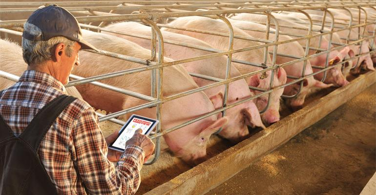 FeedView-Farmer-hogs-1540-800.jpg