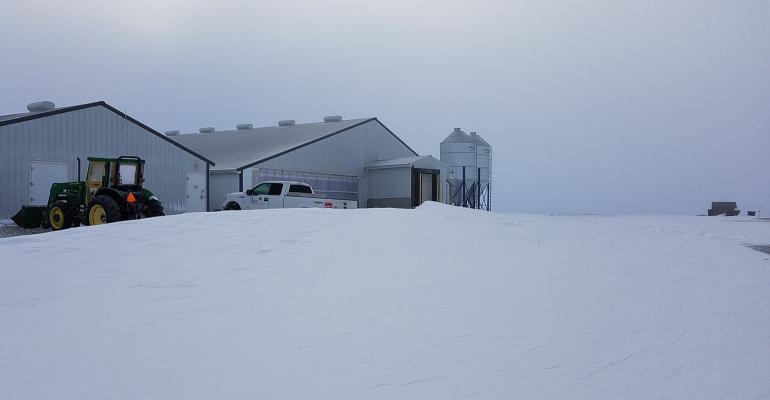 hog barns during a snowstorm