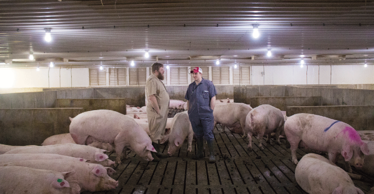 Chet Mogler, who runs Pig Hill Farms with family in northwest Iowa, has found their ESF system vital to their 4,400-sow farm.