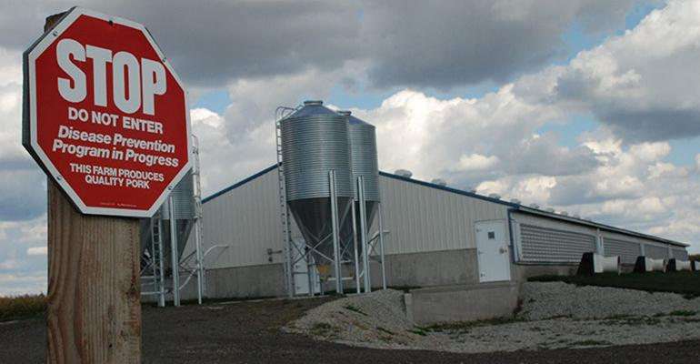 Stop sign alerting visitors that they are entering a disease prevention area outside of a hog barn.