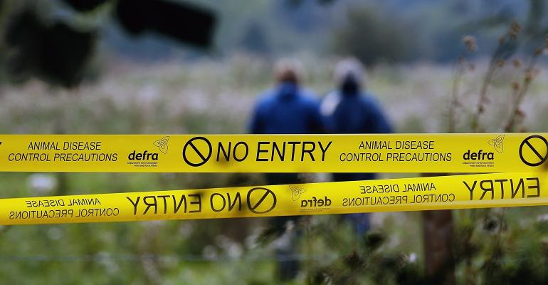 Yellow tape cordons off an area where foot-and-mouth disease has been suspected.