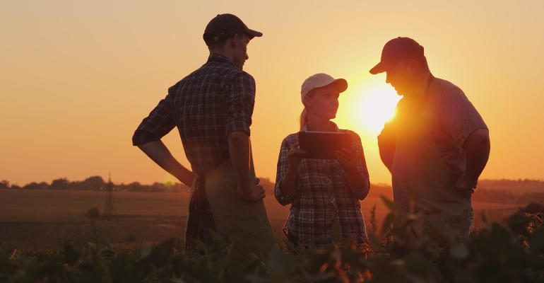 Three people discussing in a farm field