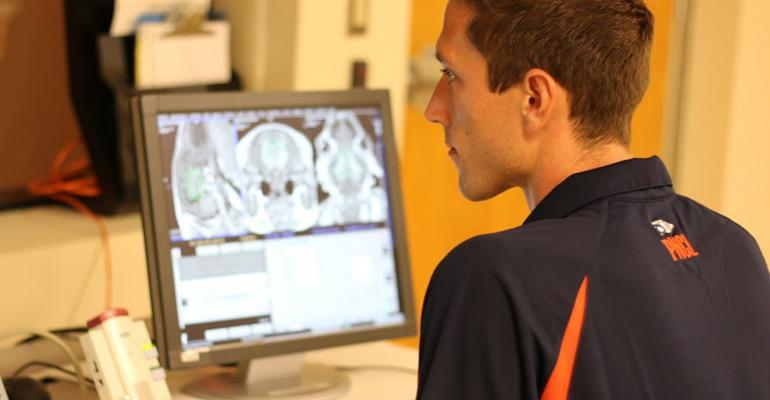Graduate student Austin Mudd scans piglet brain images.