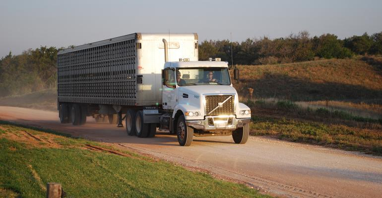 Livestock truck on a gravel road