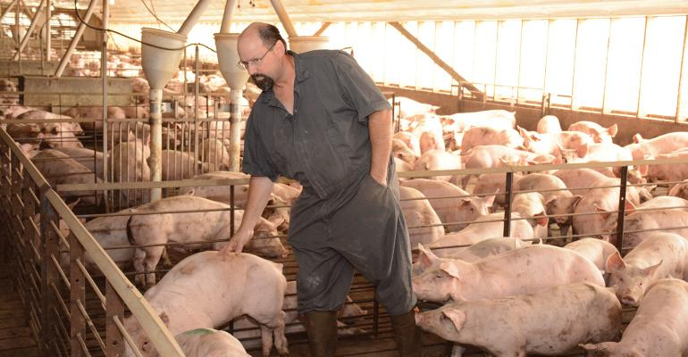 One aspect of The Maschhoffs regional model is to empower animal caregivers, such as Donnie Steber, senior production manager in the Great South Region, to be able to make the best decisions for the animals under their care.