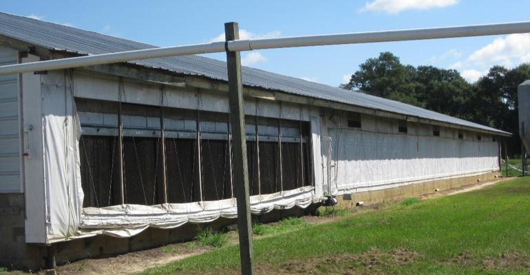 North Carolina hog finishing barn retrofitted with cool cells.
