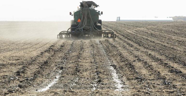 Nutrient management in soybean stubble