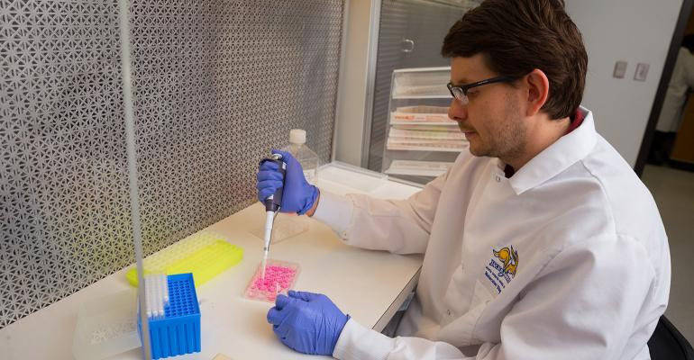 Research associate Fernando Bauermann prepares media in which to culture cells to detect live virus, as part of research to determine which animal viruses can survive the 37-day voyage from Beijing to Des Moines, Iowa, in feed ingredients.