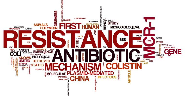 Antibiotic resistance word jumble