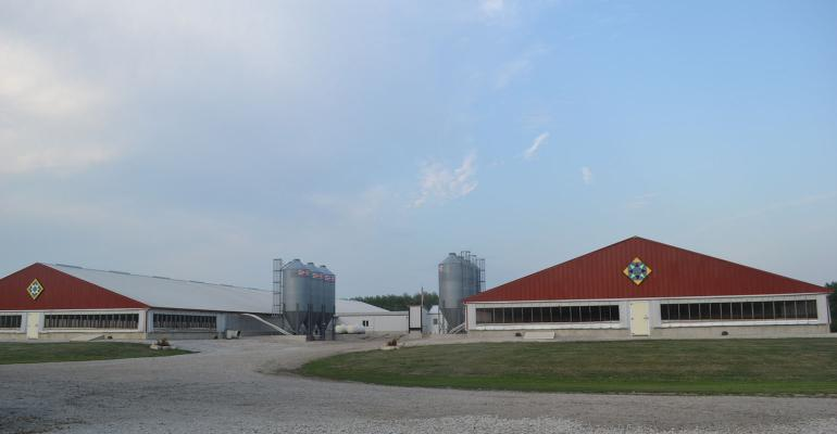 Side-by-side red hog barns
