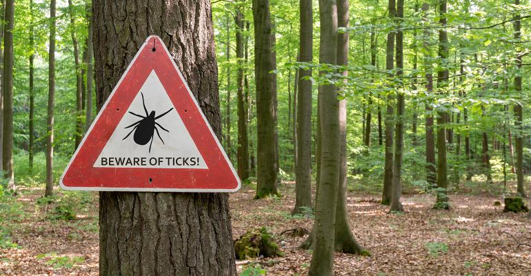ASF is only transmitted by one genus of soft ticks and these ticks are very different from hard ticks.