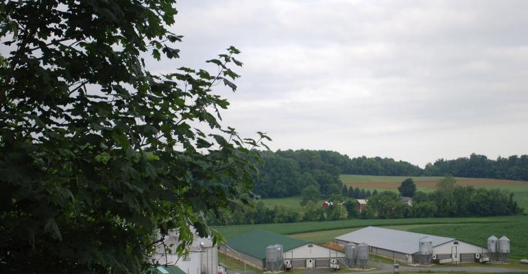 Scenic view overlooking a couple of hog barns