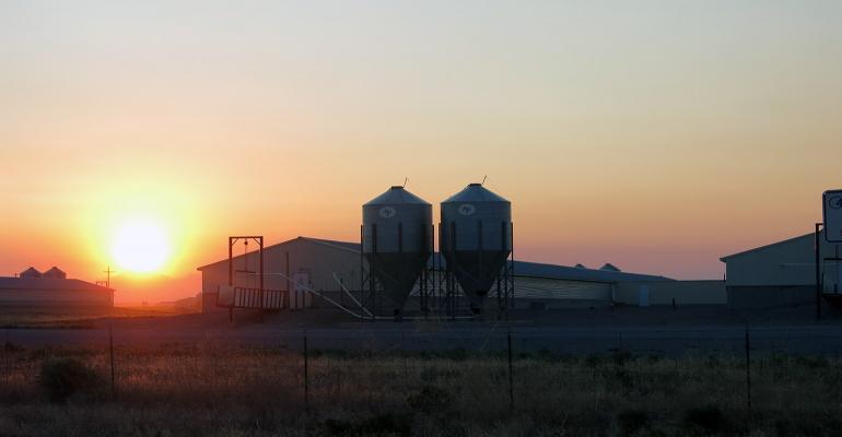 Sun setting behind a hog farm