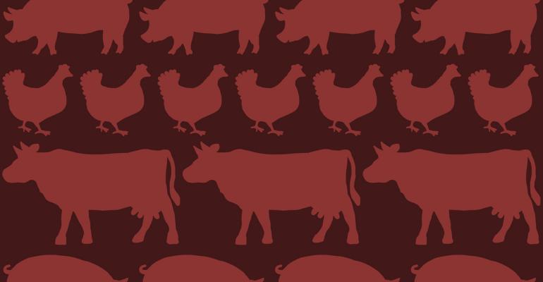Pig, chicken, cow wallpaper