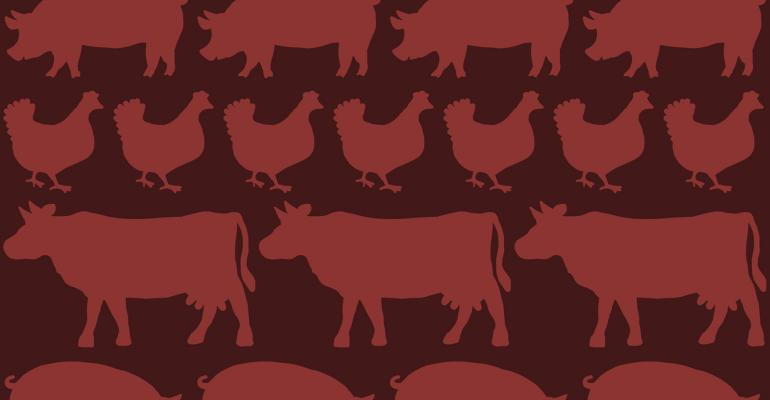 Pig, chicken, cow wallpaper