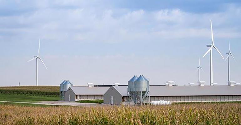 NHF-smithfield-foods-2018-sustainability-report3.jpg