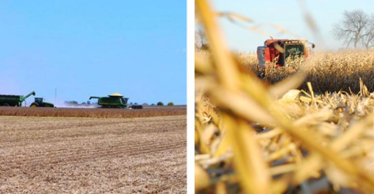 Composite photo of soybean and corn harvest