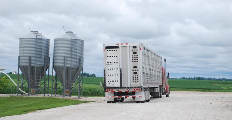 livestock trailer by two feed bulk bins