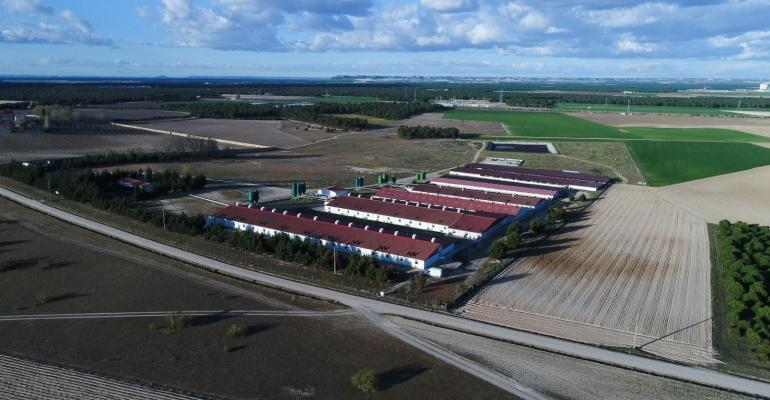 La Mejorada Farm in Olmedo, Valladolid, Spain. This farm has obtained the Porc d'Or Diamond.Award in 2017, the highest recognition of the Spanish swine industry.
