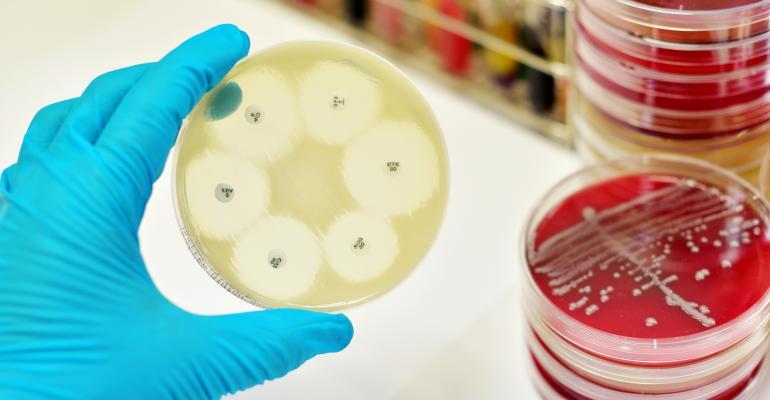 Antibiotic-resistant gene