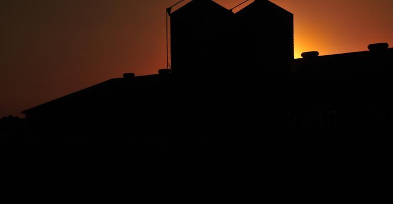 Sunset hog barns