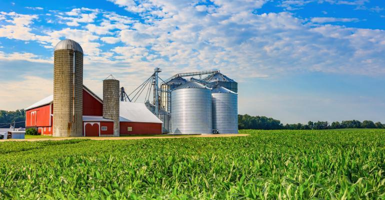 Spring corn crop; farm with barn, Midwest USA; agriculture; crop with barn; crop field, corn field; Indiana farm; Ohio farm; Iowa farm