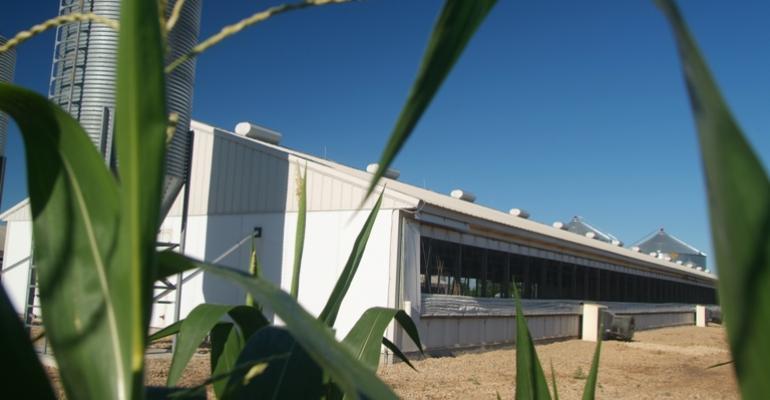 braun finishing barns