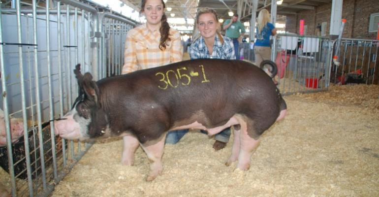 Lacey left and Mackenzie Taylor made the trip from Alba TX to Des Moines for the World Pork Expo Junior National