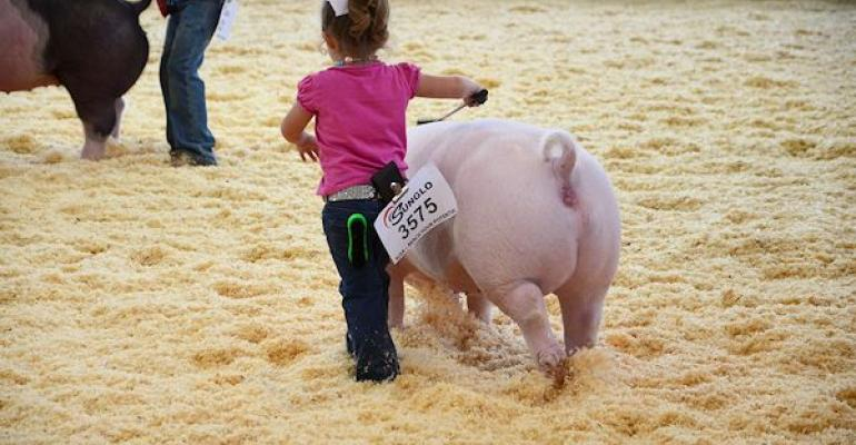 This Novice in the World Pork Expo Junior National handled her pig like a pro  even when the pig decided to lay down