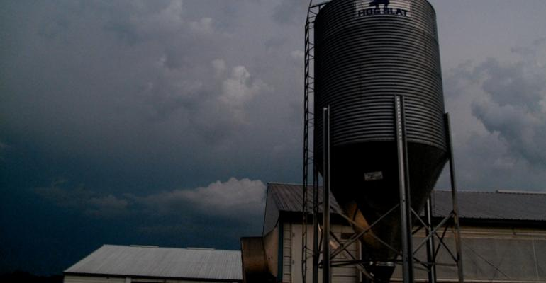 looming storm over hog barn