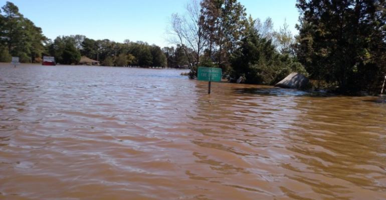Flooded road on way to Jan Archers hog farm