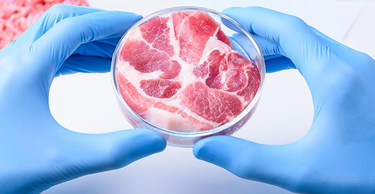 lab-cultured meat.jpg