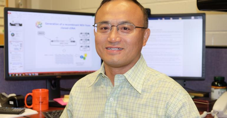 Wenjun Ma, associate professor of diagnostic medicine and pathobiology in Kansas State University's College of Veterinary Medicine, will research swine diseases with a pair of grants totaling more than $700,000.