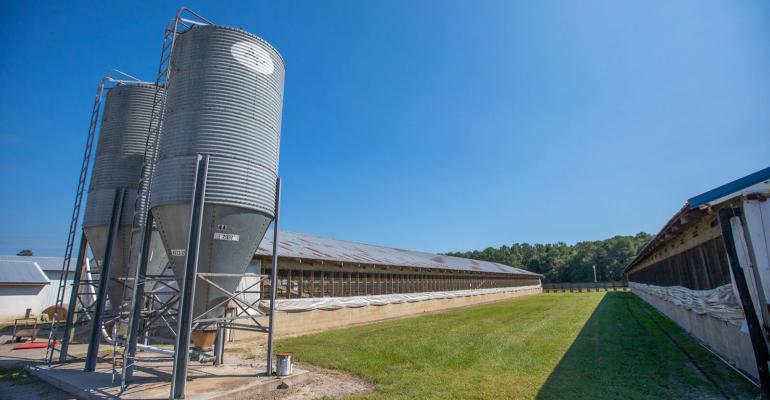 nhf-edward-farm-northcarolina-1540.jpg