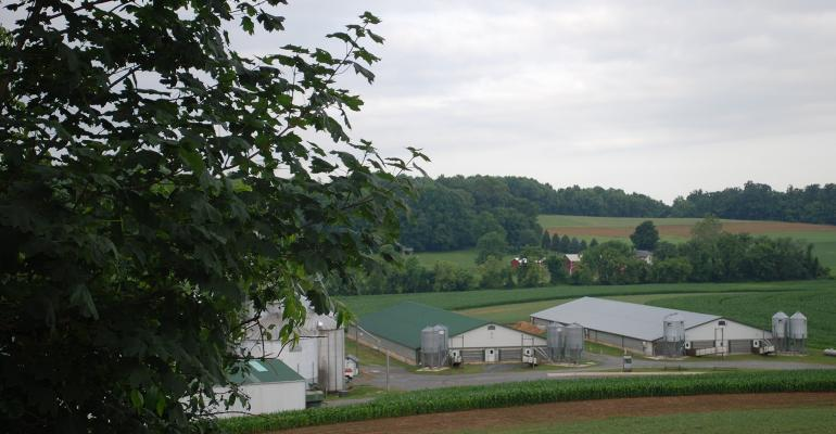 Hog barns in a scenic valley