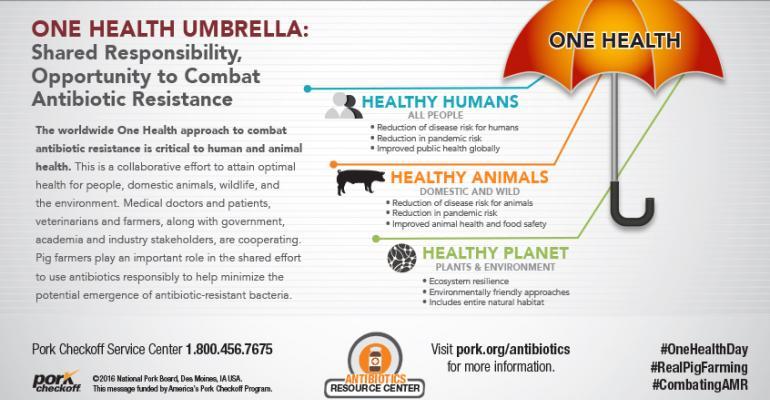 Graphic depiction of One Health Umbrella