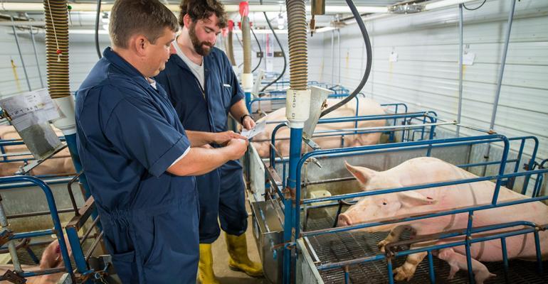 Smithfield animal care