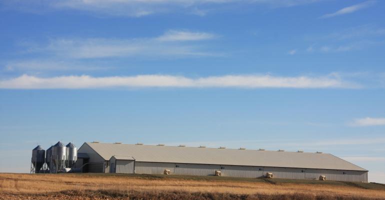 swine barn in Iowa in autumn_DarcyMaulsby_iStock_Thinkstock-464580998.jpg